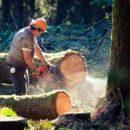 DevOps: Release the Hidden Power of Your Log Files